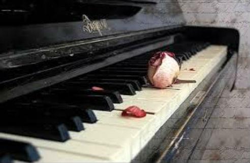 远歌国际_维也纳变奏曲_远生的钢琴